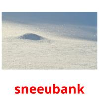 sneeubank picture flashcards