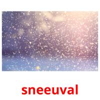 sneeuval picture flashcards
