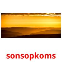 sonsopkoms picture flashcards