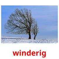 winderig picture flashcards