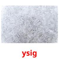 ysig picture flashcards