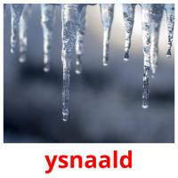 ysnaald picture flashcards