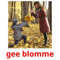 gee blomme picture flashcards