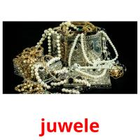 juwele picture flashcards