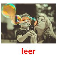leer picture flashcards