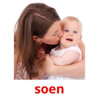 soen picture flashcards