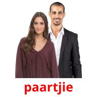 paartjie picture flashcards