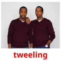 tweeling picture flashcards