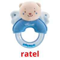 ratel picture flashcards