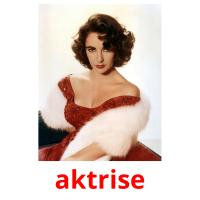 aktrise picture flashcards