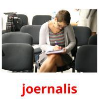 joernalis picture flashcards