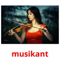 musikant picture flashcards