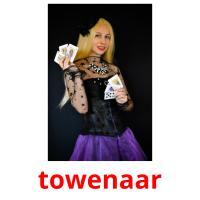 towenaar picture flashcards