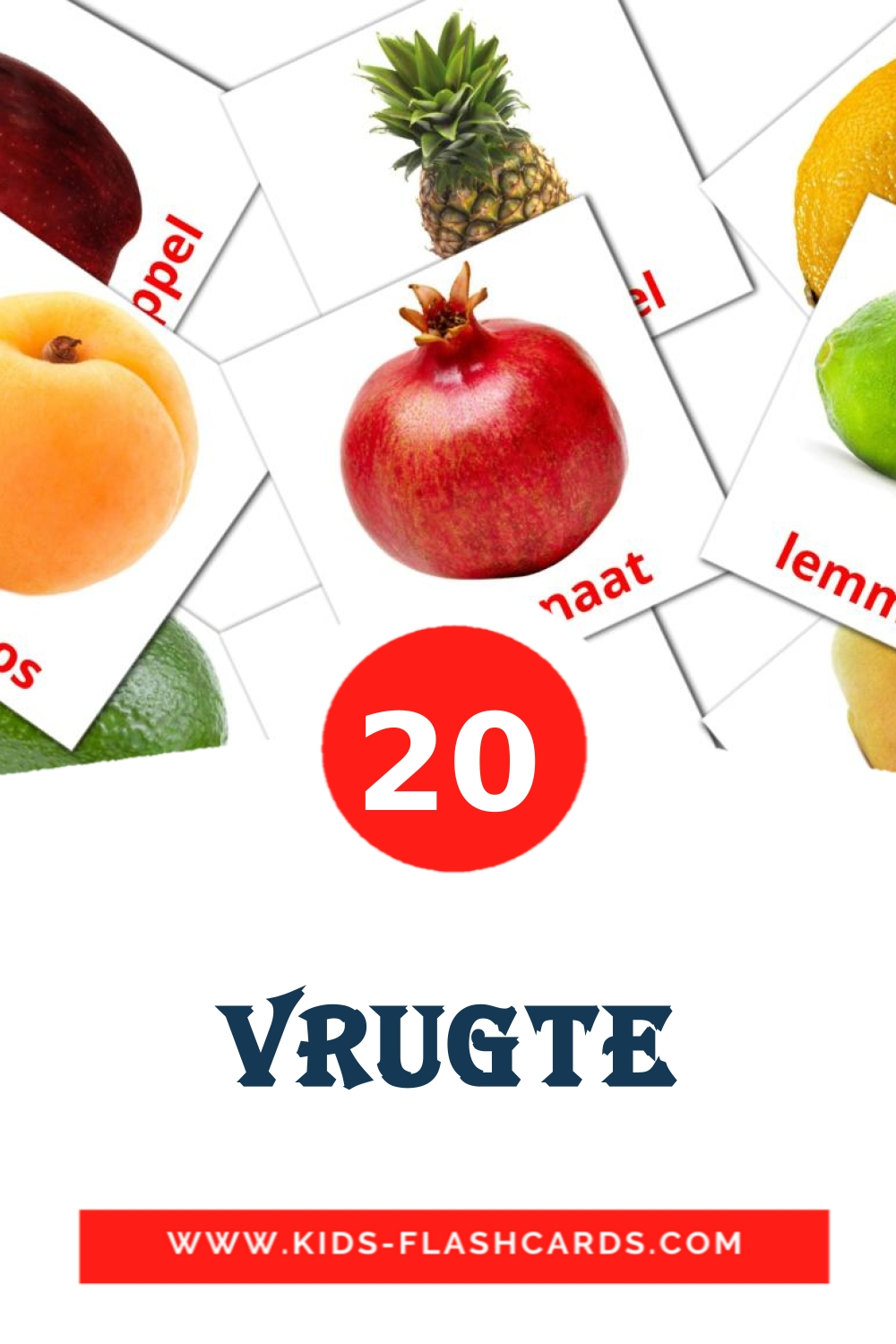 20 Vrugte Picture Cards for Kindergarden in afrikaans