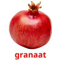 granaat picture flashcards