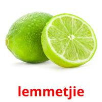 lemmetjie picture flashcards