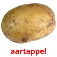 aartappel picture flashcards