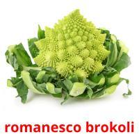 romanesco brokoli picture flashcards