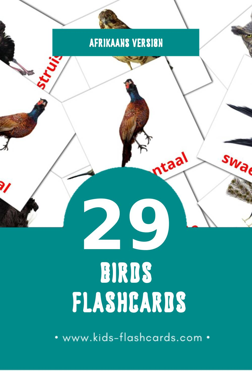 Visual Voels Flashcards for Toddlers (29 cards in Afrikaans)