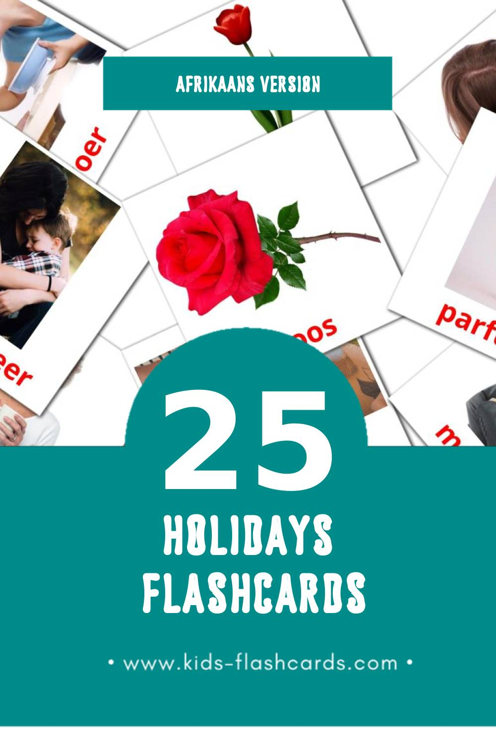 Visual vakansies Flashcards for Toddlers (25 cards in Afrikaans)