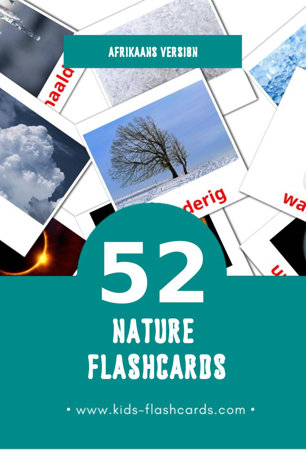 Visual Natureza  Flashcards for Toddlers (31 cards in Afrikaans)