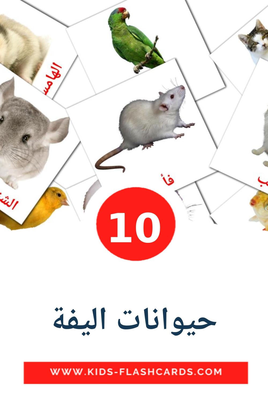 10  حيوانات اليفة  Picture Cards for Kindergarden in arabic