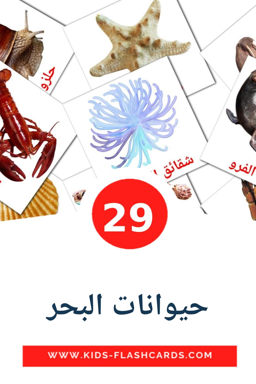 29 حيوانات البحر Picture Cards for Kindergarden in arabic