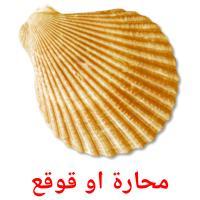 محارة او قوقع picture flashcards