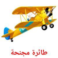 طائرة مجنحة picture flashcards