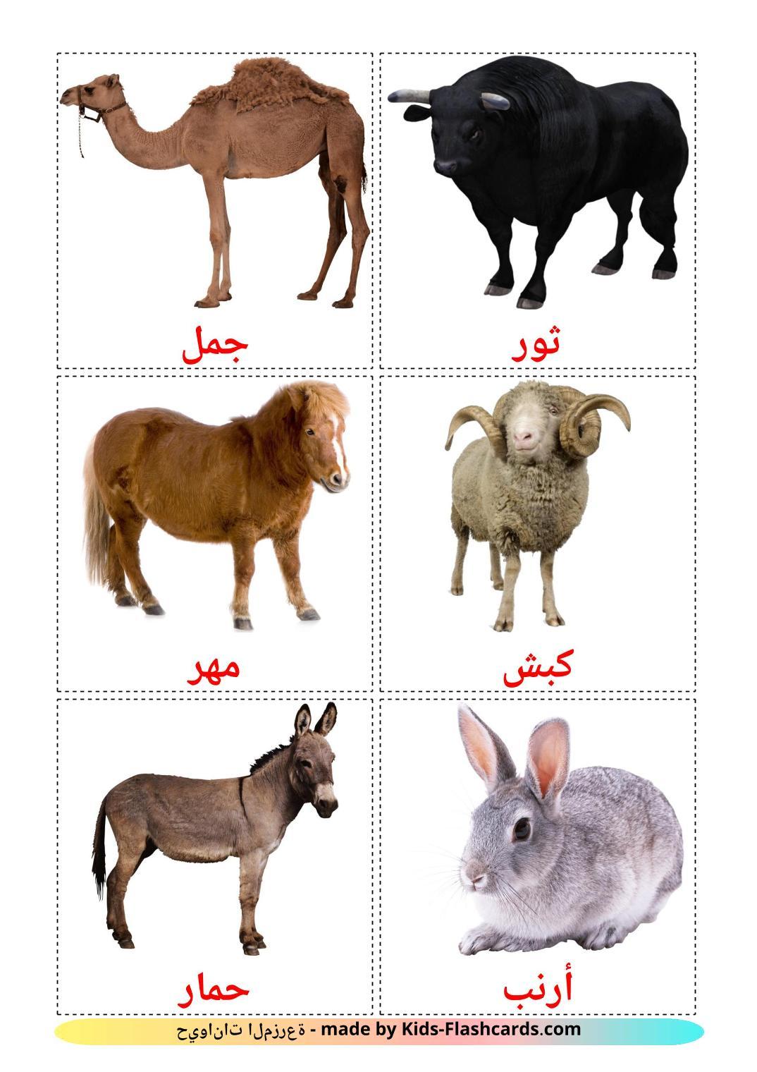 Farm animals - 15 Free Printable arabic Flashcards