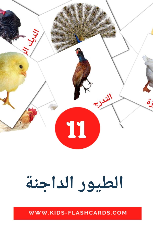 11  الطيور الداجنة Picture Cards for Kindergarden in arabic
