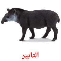 التابير picture flashcards