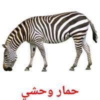 حمار وحشي picture flashcards
