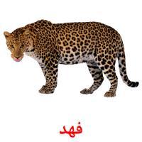 فهد picture flashcards