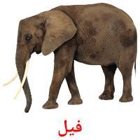 فيل picture flashcards