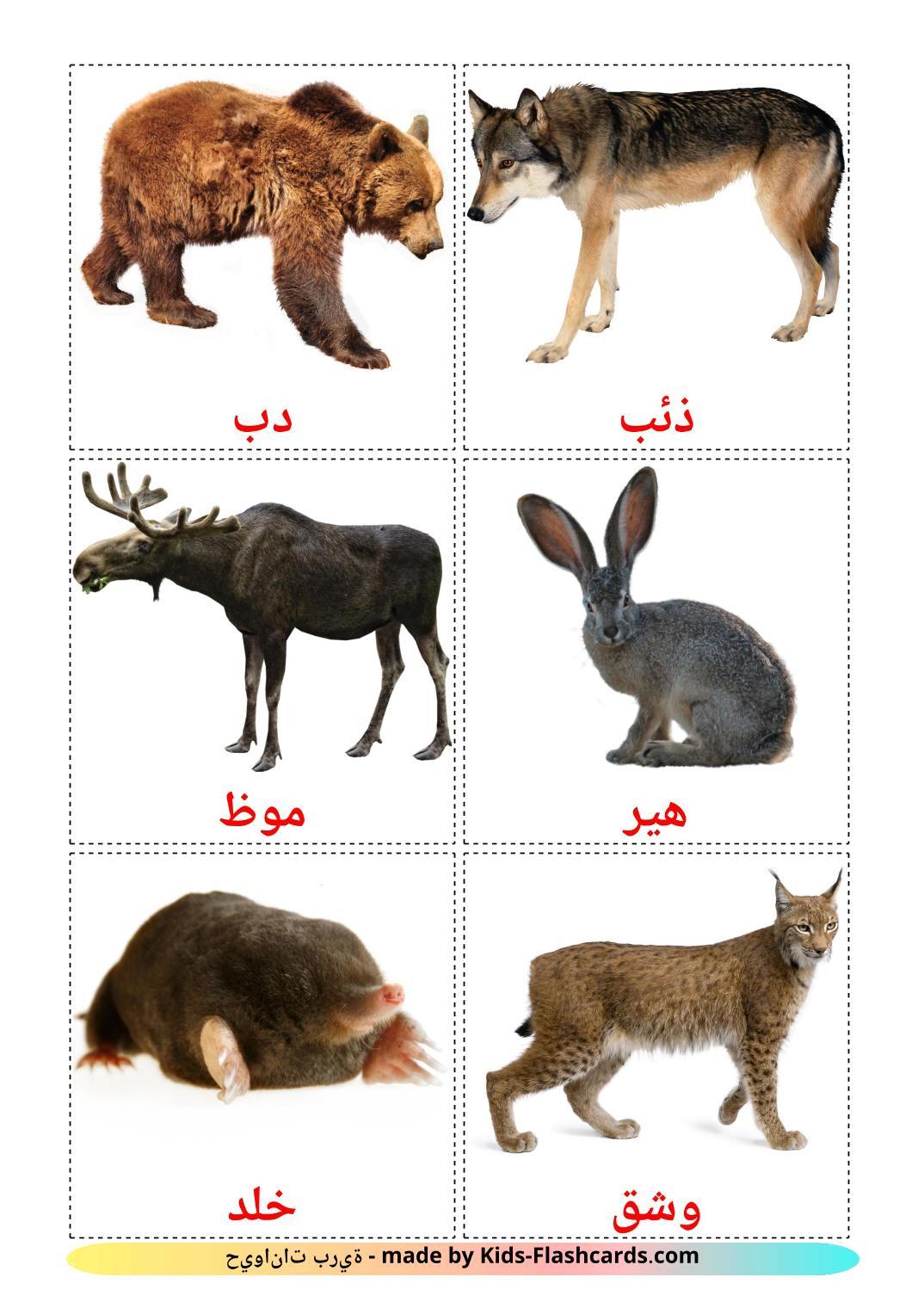 Forest animals - 22 Free Printable arabic Flashcards