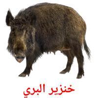 خنزير البري picture flashcards