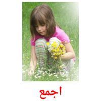 اجمع picture flashcards