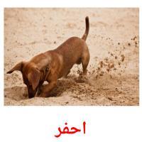 احفر picture flashcards