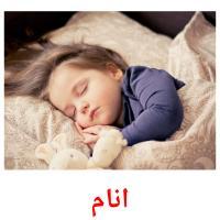 انام picture flashcards