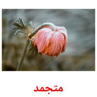 متجمد picture flashcards