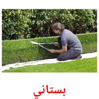 بستاني picture flashcards