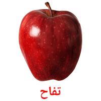 تفاح picture flashcards