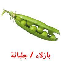 بازلاء / جلبانة picture flashcards