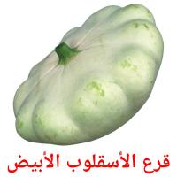 قرع الأسقلوب الأبيض picture flashcards