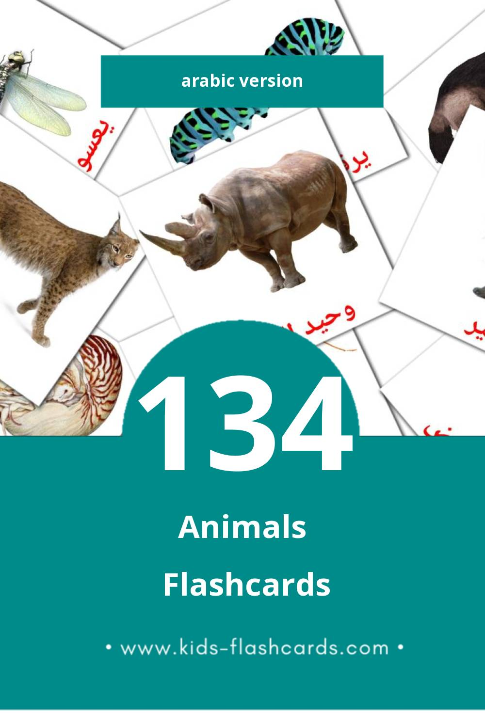 Visual حيوانات برية Flashcards for Toddlers (134 cards in Arabic)