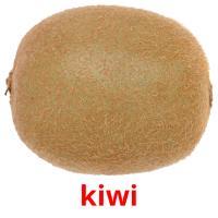 kiwi picture flashcards