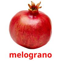 melograno picture flashcards