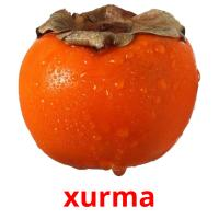 xurma picture flashcards
