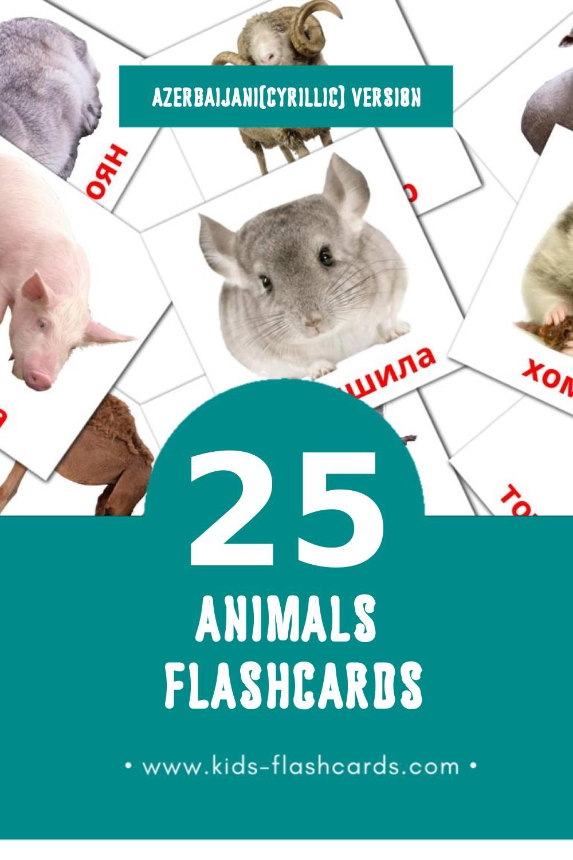 Visual ANIMALI Flashcards for Toddlers (25 cards in Azerbaijani(cyrillic))